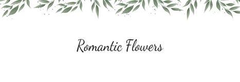 Βοτανικό διανυσματικό έμβλημα σχεδίου Horisontal Ρόδινος αυξήθηκε, ευκάλυπτος, succulents, λουλούδια, πρασινάδα Φυσική κάρτα άνοι διανυσματική απεικόνιση