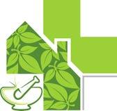 Βοτανικό λογότυπο θεραπείας Στοκ φωτογραφία με δικαίωμα ελεύθερης χρήσης