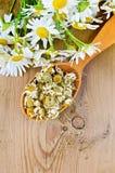 Βοτανικό τσάι από chamomile ξηρός και φρέσκος στο κουτάλι Στοκ Φωτογραφίες