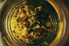 βοτανικό τσάι γυαλιού στοκ εικόνες