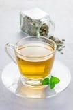 Βοτανικό τσάι μεντών σε ένα φλυτζάνι γυαλιού με το ξηρό peppermint τσάι στο υπόβαθρο Στοκ Εικόνα