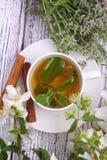 Βοτανικό τσάι με τη μέντα, το θυμάρι και την κανέλα Στοκ Φωτογραφίες