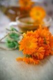 Βοτανικό τσάι με marigold τα λουλούδια Στοκ φωτογραφία με δικαίωμα ελεύθερης χρήσης