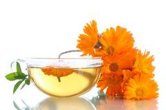Βοτανικό τσάι με marigold τα λουλούδια Στοκ Φωτογραφίες