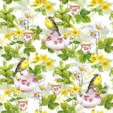 Βοτανικό τσάι - δοχείο, φλυτζάνι και πουλί επανάληψη προτύπων watercolor Στοκ Φωτογραφία