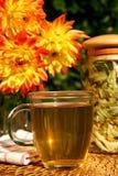 βοτανικό τσάι Στοκ εικόνα με δικαίωμα ελεύθερης χρήσης
