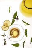 βοτανικό τσάι στοκ εικόνα