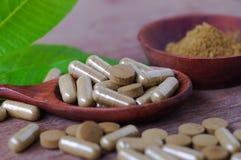 Βοτανικό φάρμακο στο χάπι και την κάψα Στοκ Εικόνες