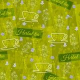 Βοτανικό floral υπόβαθρο θέματος τσαγιού άνευ ραφής διάνυσμα προτύπ&omeg Στοκ Εικόνες