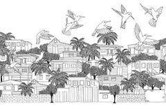 Βουίζοντας πουλιά στις Καραϊβικές Θάλασσες Στοκ φωτογραφία με δικαίωμα ελεύθερης χρήσης