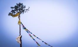 Βουδιστικές θιβετιανές σημαίες προσευχής που δένονται στο υψηλό δέντρο πεύκων Στοκ Εικόνα