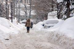 ΒΟΥΚΟΥΡΕΣΤΙ ΡΟΥΜΑΝΙΑ - 14 Φεβρουαρίου: Καιρικές ανωμαλίες Στοκ Φωτογραφίες
