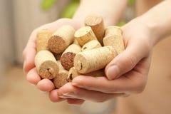 βουλώνει το κρασί Στοκ εικόνες με δικαίωμα ελεύθερης χρήσης