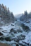 Βουνά, ένας ποταμός βουνών το χειμώνα Στοκ Φωτογραφία