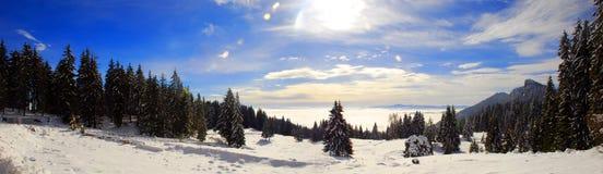 Βουνά, δέντρα πεύκων και τοπίο χιονιού Στοκ εικόνα με δικαίωμα ελεύθερης χρήσης