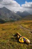 βουνά ατόμων Στοκ Εικόνες