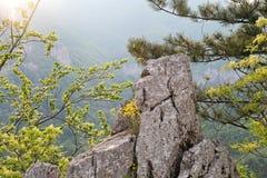 Βουνά βράχων στα βουνά Cerna, Ρουμανία στοκ φωτογραφία