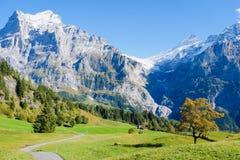 Βουνά γύρω από Grindelwald Στοκ Φωτογραφίες