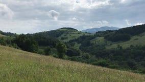 Βουνά και λιβάδια στη Σερβία απόθεμα βίντεο