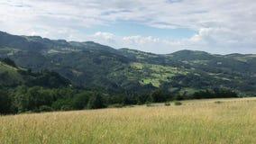 Βουνά και λιβάδια της Σερβίας απόθεμα βίντεο
