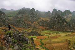 Βουνά και ορυζώνες κοντά στο φορτηγό ήχων καμπάνας στο εκτάριο Giang στοκ εικόνες