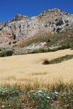 Βουνά καρστ και τομέας σίτου, Ισπανία Στοκ Εικόνα