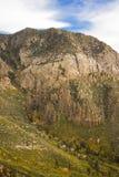 Βουνά 2 κοιλάδων πεύκων Στοκ Εικόνα