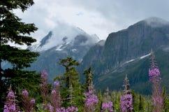 Βουνά κοντά σε Μ. Gurr Lake, Bella Coola, Π.Χ., Καναδάς Στοκ Εικόνα
