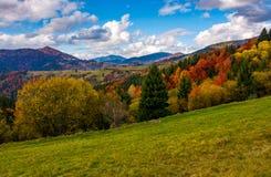 Βουνά με το ζωηρόχρωμο δάσος φυλλώματος Στοκ φωτογραφία με δικαίωμα ελεύθερης χρήσης