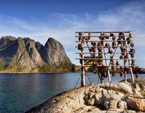 Βουνά Νορβηγία αλιείας ακτών φιορδ Στοκ φωτογραφίες με δικαίωμα ελεύθερης χρήσης