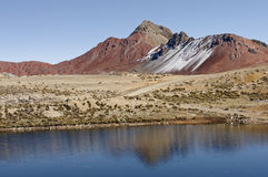 βουνά Περού στοκ εικόνες με δικαίωμα ελεύθερης χρήσης