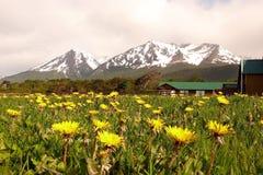 βουνά πικραλίδων στοκ εικόνα με δικαίωμα ελεύθερης χρήσης