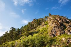 Βουνά που εισβάλλονται με τα δέντρα πεύκων Βουνό Altai, νότιο Si στοκ φωτογραφία με δικαίωμα ελεύθερης χρήσης