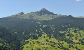 Βουνά σε Grindelwald, Ελβετία Στοκ Εικόνες