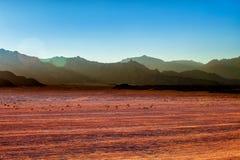 Βουνά στην έρημο στο τοπίο της Αιγύπτου στην έρημο στην Αίγυπτο Στοκ Φωτογραφίες