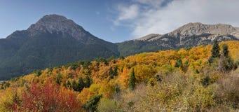 Βουνά στη διακόσμηση φθινοπώρου Στοκ Εικόνες