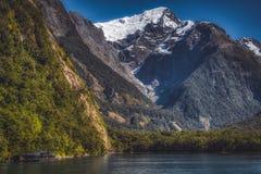 Βουνά στον ήχο Milford fiord στοκ φωτογραφία με δικαίωμα ελεύθερης χρήσης