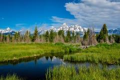 Βουνά στο μεγάλο εθνικό πάρκο Teton με την αντανάκλαση στον ποταμό φιδιών Στοκ φωτογραφία με δικαίωμα ελεύθερης χρήσης