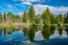Βουνά στο μεγάλο εθνικό πάρκο Teton με την αντανάκλαση στον ποταμό φιδιών Στοκ εικόνες με δικαίωμα ελεύθερης χρήσης