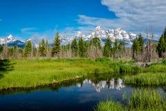 Βουνά στο μεγάλο εθνικό πάρκο Teton με την αντανάκλαση στον ποταμό φιδιών Στοκ Φωτογραφίες