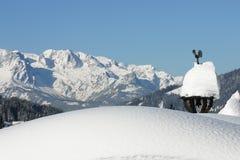 βουνά της Αυστρίας χιονώ&delta Στοκ Εικόνες