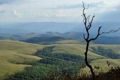 Βουνά της Βραζιλίας στοκ εικόνα
