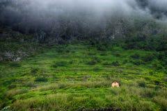 Βουνά της Μαδέρας, Πορτογαλία Στοκ εικόνα με δικαίωμα ελεύθερης χρήσης