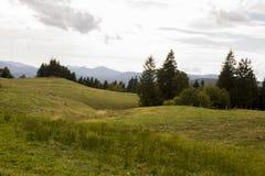 Βουνά της Ρουμανίας Στοκ Εικόνες