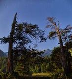Βουνά της σειράς Arkhyz, λίμνη Καύκασου της Sofia, που αναρριχείται mou Στοκ φωτογραφίες με δικαίωμα ελεύθερης χρήσης
