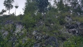 Βουνά της Σιβηρίας Στοκ Εικόνες
