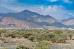 Βουνά της Misty με μερικά δέντρα στη δύσκολη έρημο της βόρεια περιοχής των Ηνωμένων Αραβικών Εμιράτων στοκ φωτογραφία με δικαίωμα ελεύθερης χρήσης