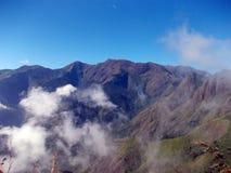 Βουνά της Misty του Κεράλα με τη βλάστηση στο πρώτο πλάνο Στοκ Εικόνες