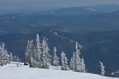 Βουνά τοπίων φύσης χειμερινά δέντρα, χιόνι και Στοκ Φωτογραφίες