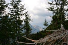 Βουνά του εθνικού πάρκου Triglav Στοκ Εικόνες